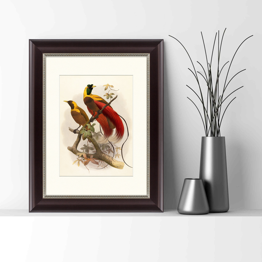 {} Картины в Квартиру Картина Красная Райская Птица (35х45 см) картины в квартиру картина морские мидии 2 35х45 см