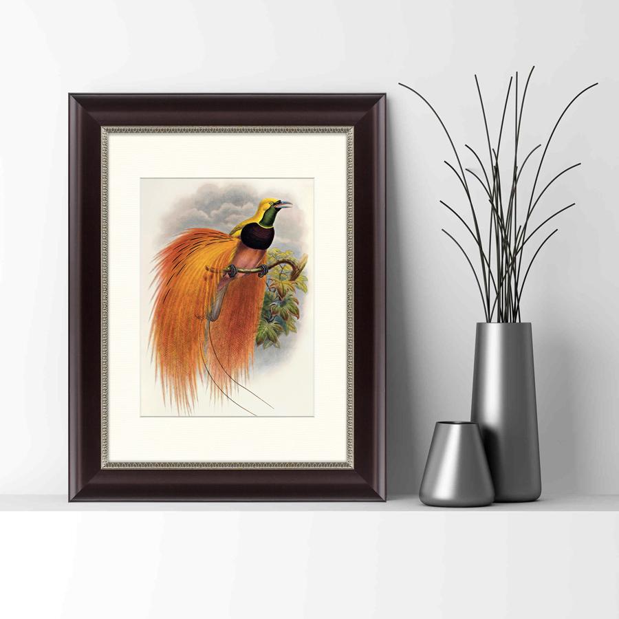 {} Картины в Квартиру Картина Красная Райская Птица (35х45 см) картины в квартиру картина убранное поле 35х45 см