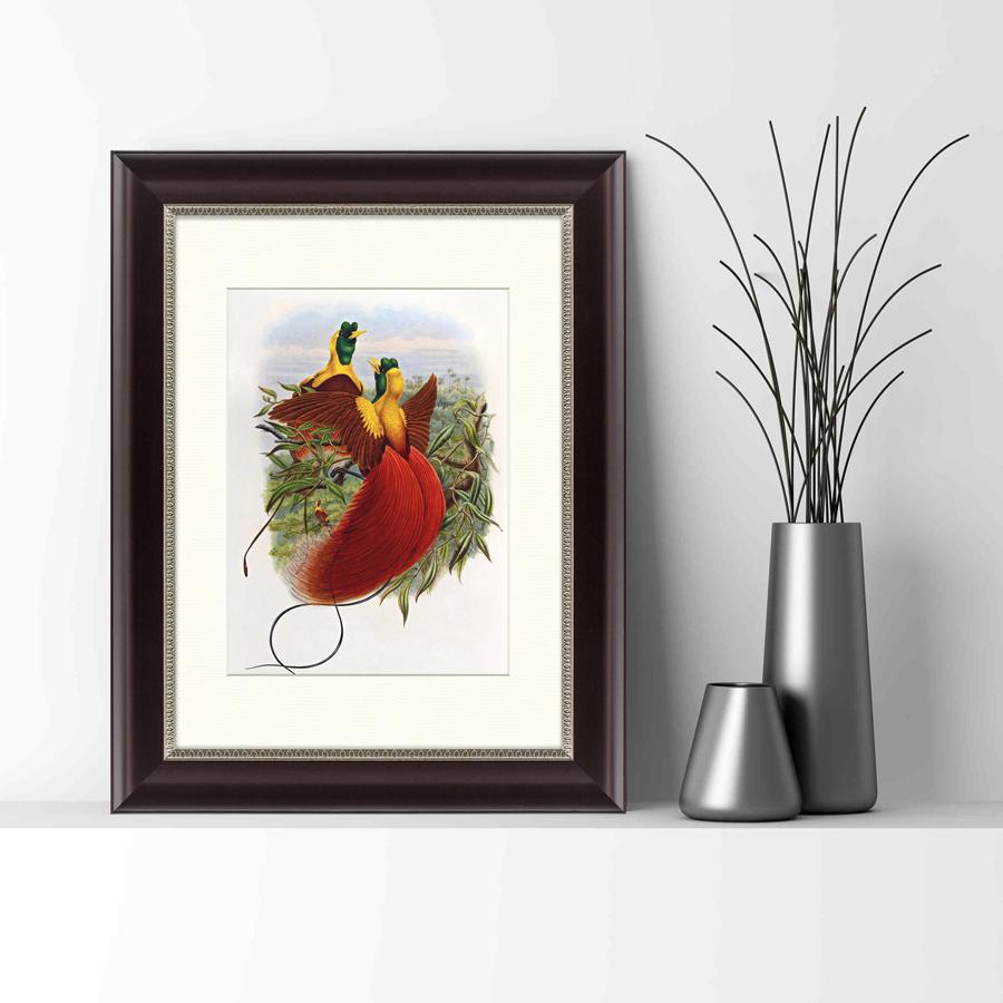 {} Картины в Квартиру Картина Красные Райские Птицы (35х45 см) картины в квартиру картина морские мидии 2 35х45 см