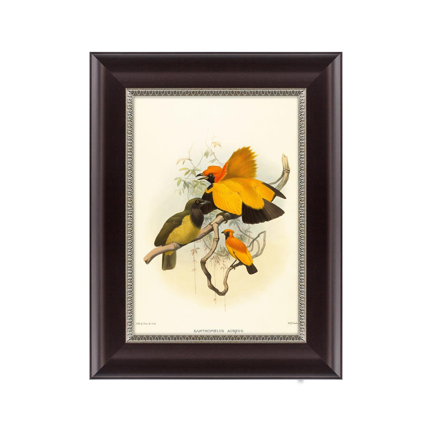 {} Картины в Квартиру Картина Золотые Райские Птицы (25х33 см) картины в квартиру картина птицы 35х35 см