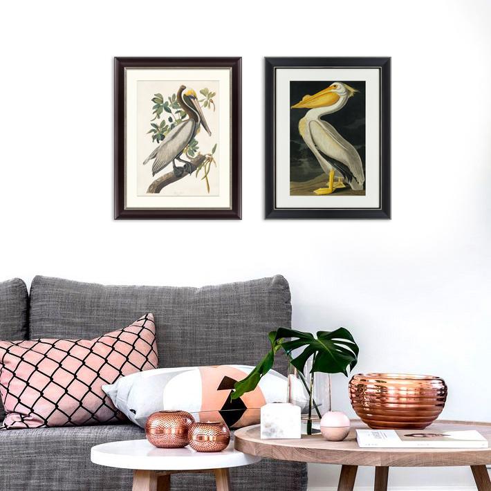 {} Картины в Квартиру Картина Американский Белый Пеликан (47х60 см) картины в квартиру картина пилигрим из мешхеда 47х60 см