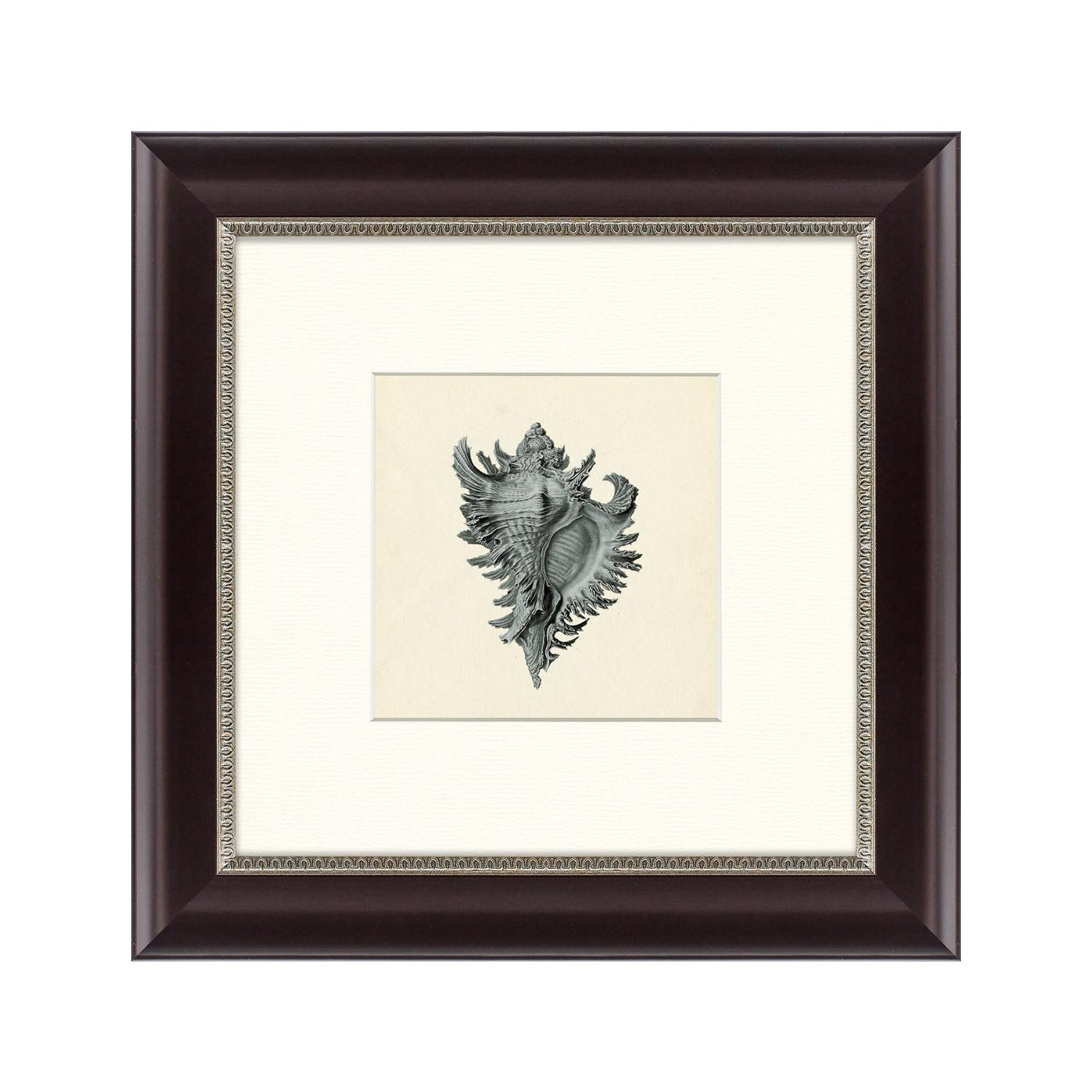 {} Картины в Квартиру Картина Морской Обитатель №1 (35х35 см) картины в квартиру картина бульдоги в шотландской клетке 35х35 см