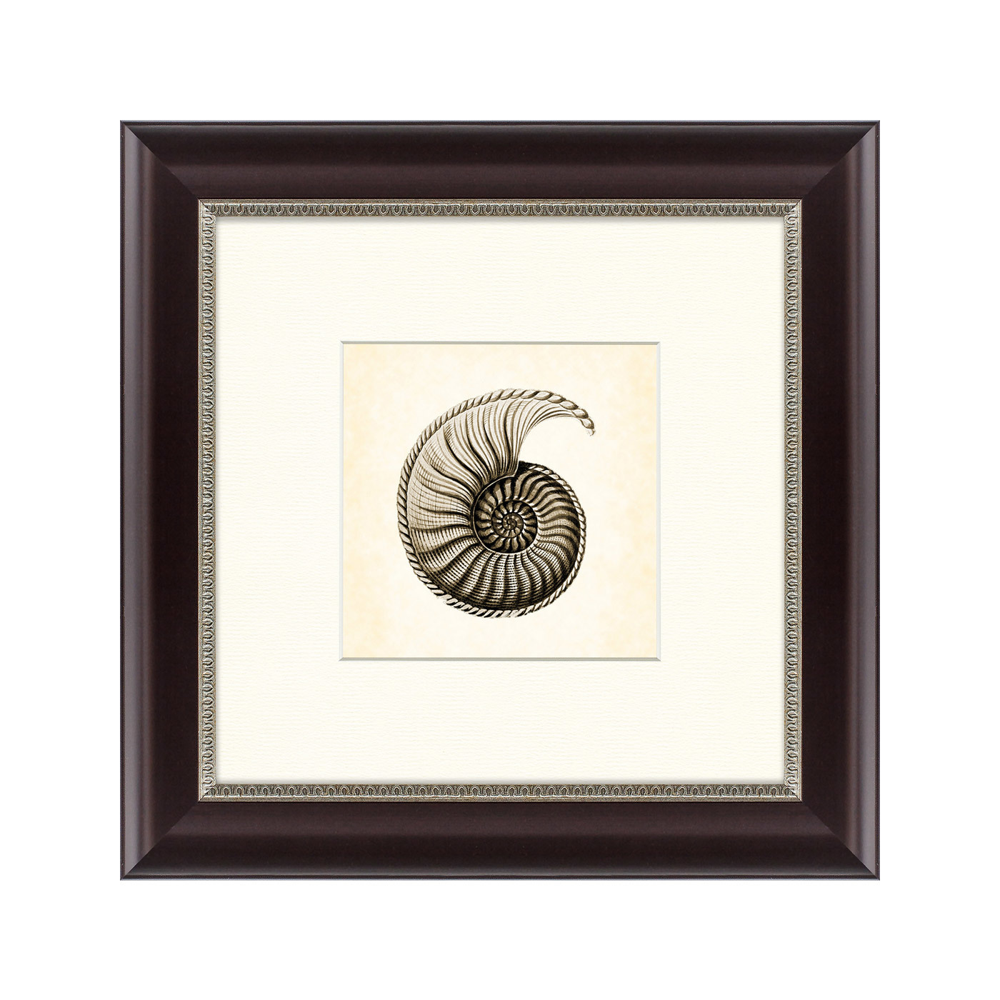 {} Картины в Квартиру Картина Морской Обитатель №2 (35х35 см) картины в квартиру картина бульдоги в шотландской клетке 35х35 см