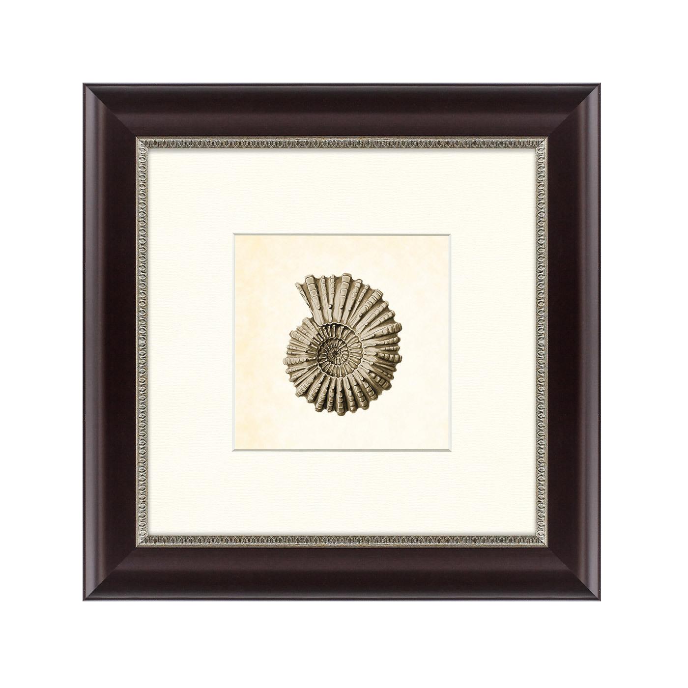 {} Картины в Квартиру Картина Морской Обитатель №3 (35х35 см) картины в квартиру картина бульдоги в шотландской клетке 35х35 см