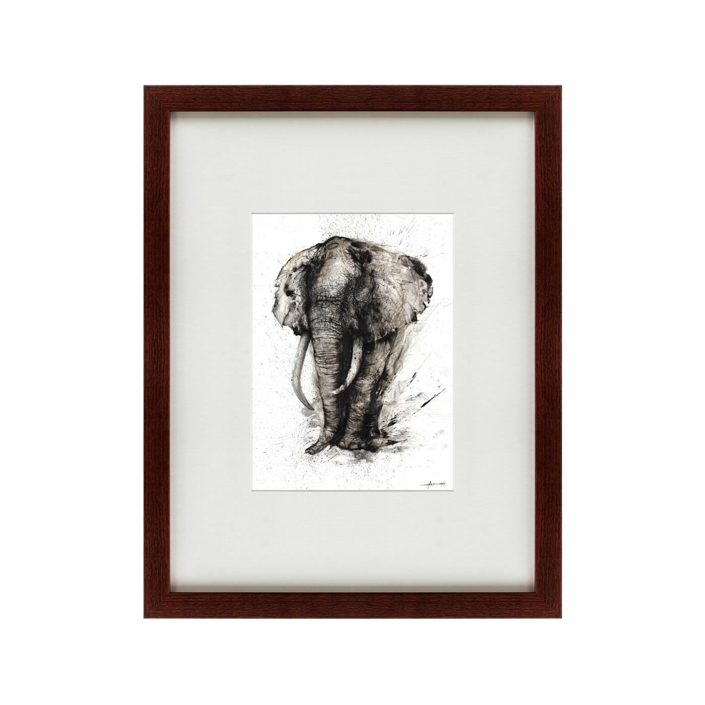 {} Картины в Квартиру Картина Слон-Мудрость (47х60 см) картины в квартиру картина бульдоги в шотландской клетке 35х35 см