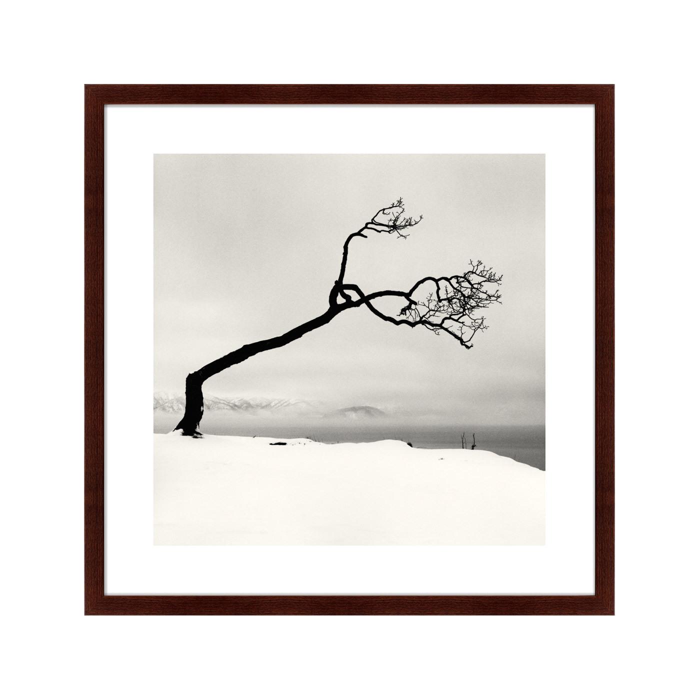 {} Картины в Квартиру Картина Snow No.3 (79х79 см) картины в квартиру картина слон 79х100 см