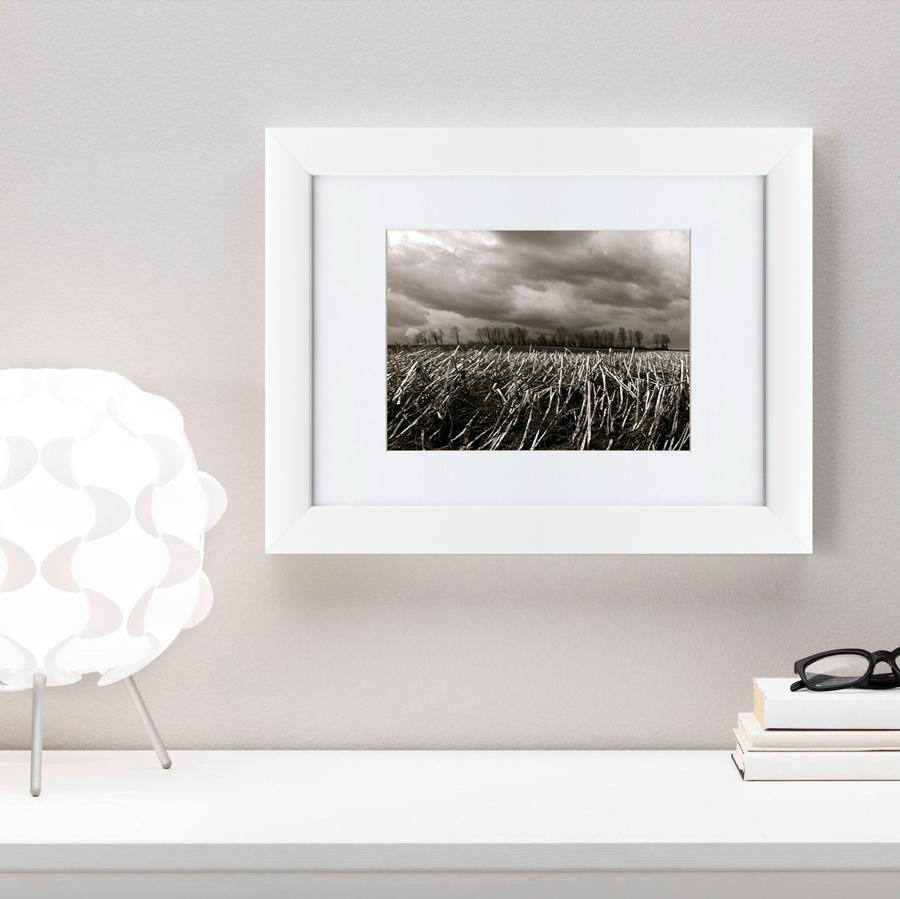 {} Картины в Квартиру Картина Убранное Поле (35х45 см) картины в квартиру картина морские мидии 2 35х45 см