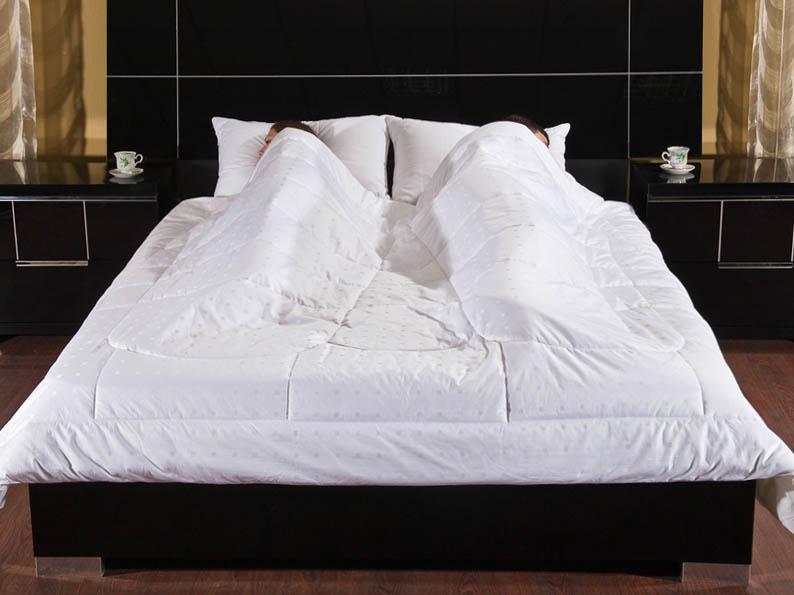 Одеяла Primavelle Одеяло Feng-Shui Цвет: Белый (200х220 см) сумка feng line world fxtx 4455