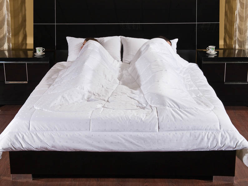 Одеяла Primavelle Одеяло Feng-Shui Цвет: Белый (200х220 см) meister denise liotta dennise klassikaline feng shui jõukuse ja heaolu suurendamiseks