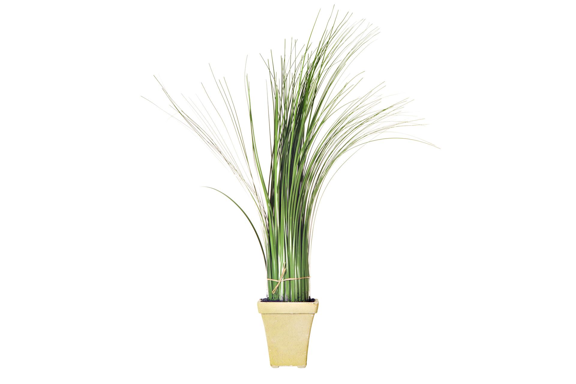 {} ARTEVALUCE Искусственное растение Jimena (10х10х60 см) lefard искусственное растение arley 85 см