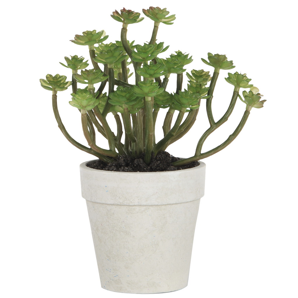 {} ARTEVALUCE Искусственное растение Sophia (11х15х18 см) lefard искусственное растение arley 85 см