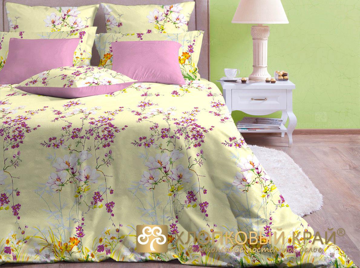 Постельное белье Хлопковый Край Постельное белье Весна (2 спал.)