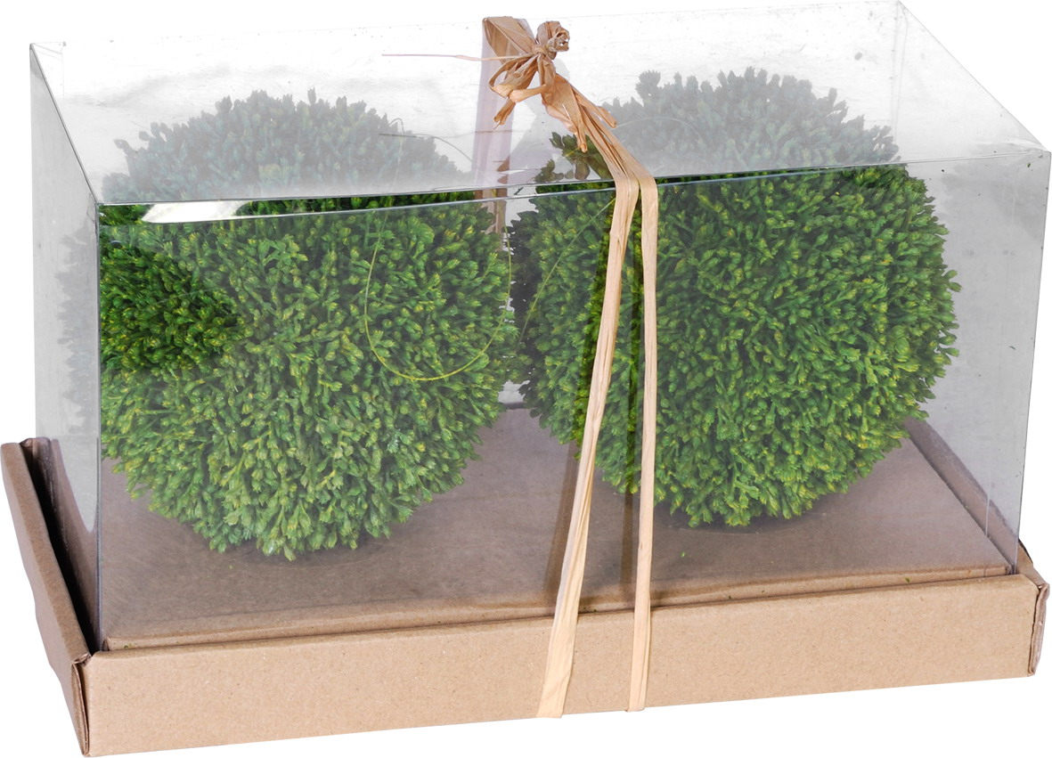 {} ARTEVALUCE Искусственное растение Guzide (15 см - 2 шт) искусственное растение мейджинг аквариум 22см в картонной коробке 15