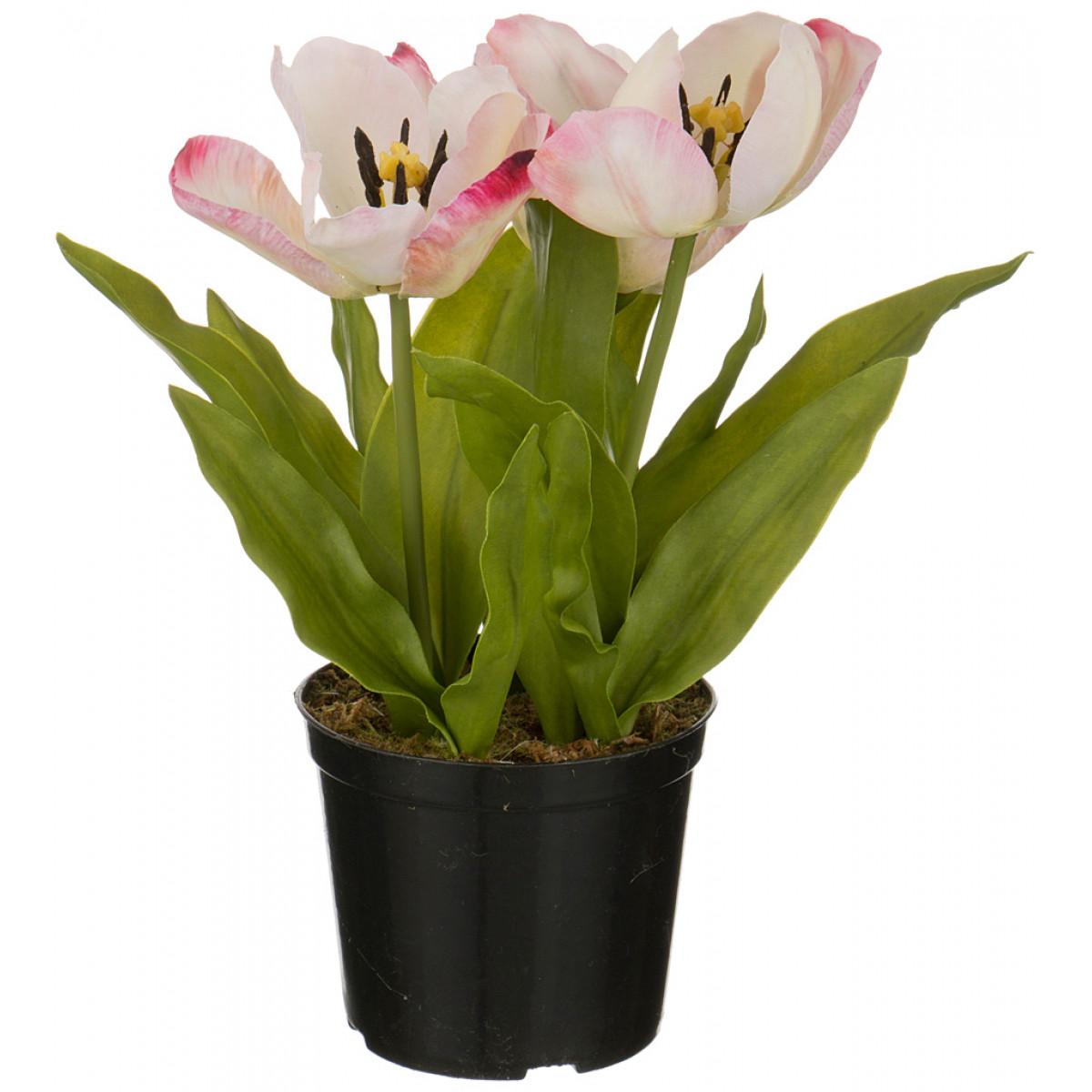 {} SILK-KA Искусственный цветок Norton  (29 см) silk ka