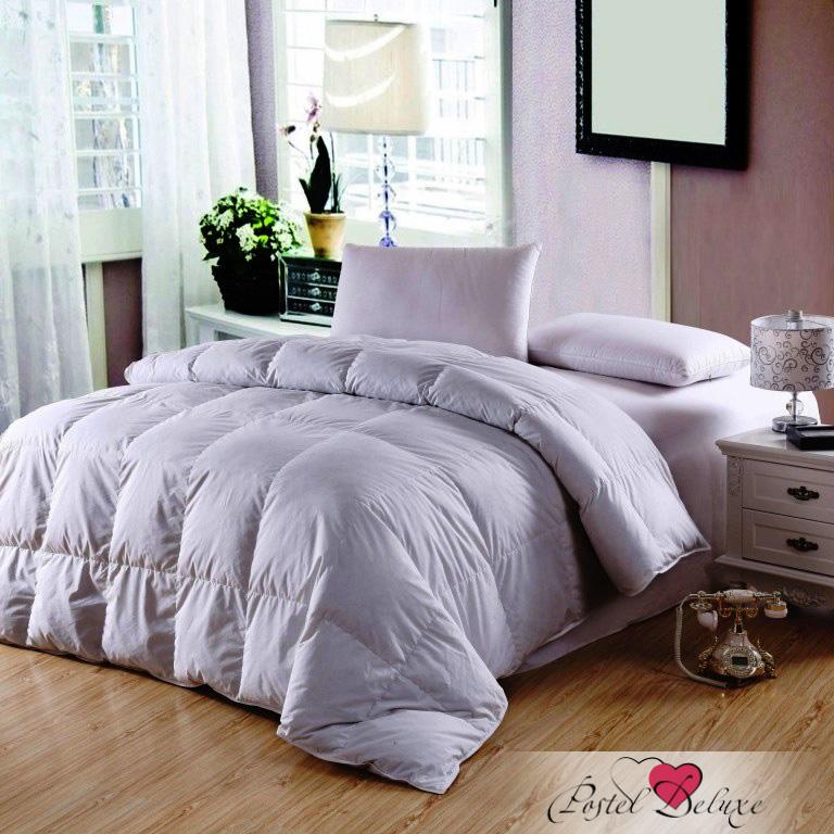 Одеяла Arya Одеяло Микрофибра (160х220 см) одеяло arya arya mp002xu0e1rr
