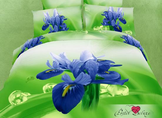Постельное белье Famille Постельное бельеRockhill(2 сп. евро) постельное белье famille постельное бельеarma 2 сп евро