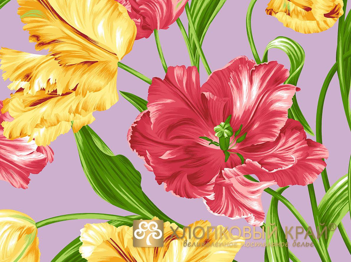 Постельное белье Хлопковый Край Постельное белье Голландия Цвет: Серый (семейное)