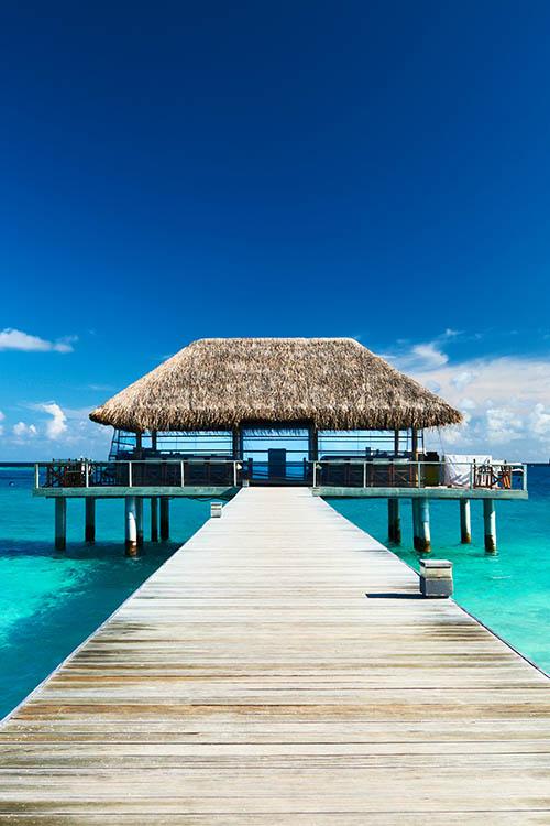 Шторы и карнизы для ванной StickButik Шторы для ванной Тропический Рай