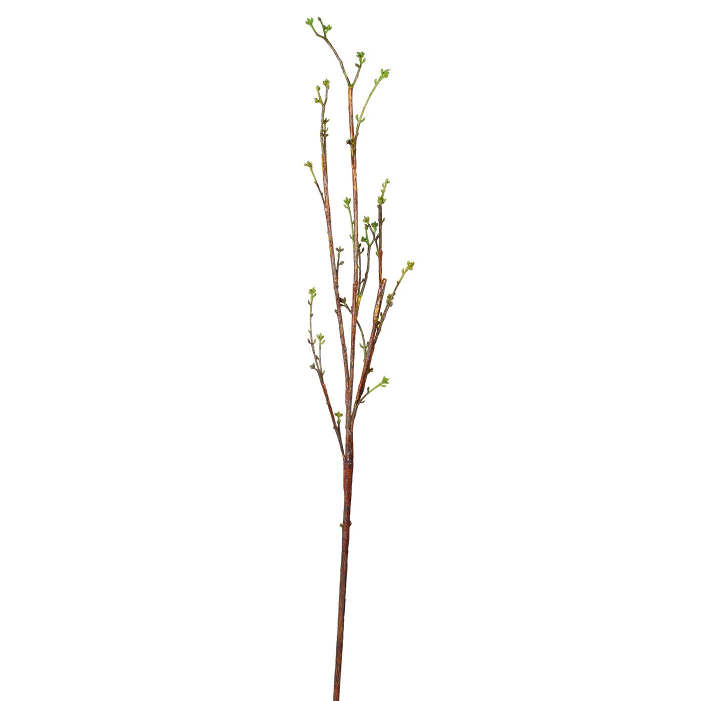Купить Искусственные растения Home Philosophy, Искусственное растение Ветка С Почками Цвет: Зелёный (114 см), Китай, Зеленый, Коричневый, Полимер