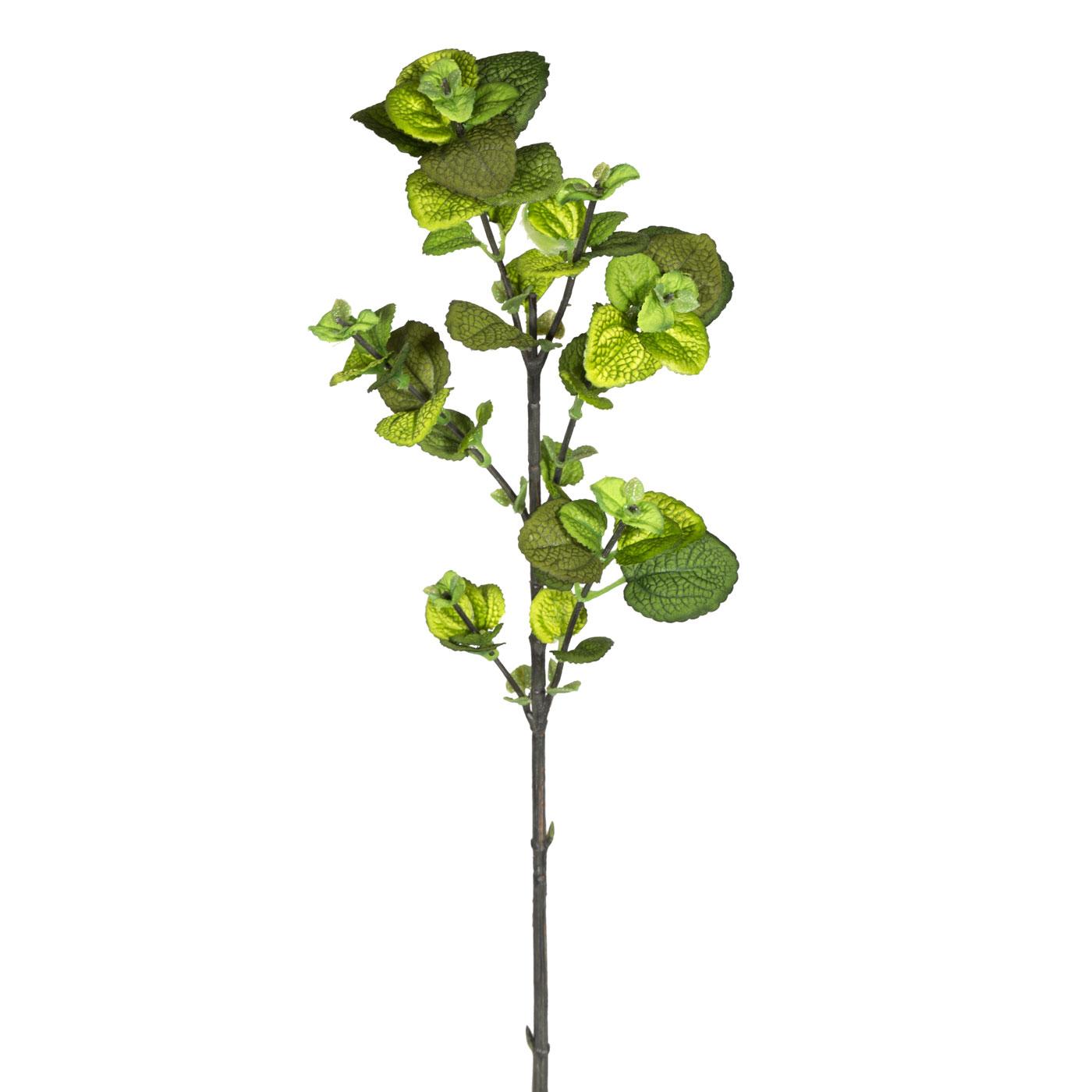 Искусственные растения Home Philosophy Искусственный цветок Ветка Мелиссы Цвет: Зелёный (48 см) napoleon искусственный цветок lettie 6х8х15 см
