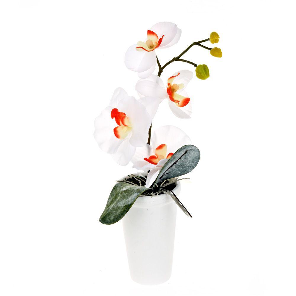 Искусственные растения Gloria Garden