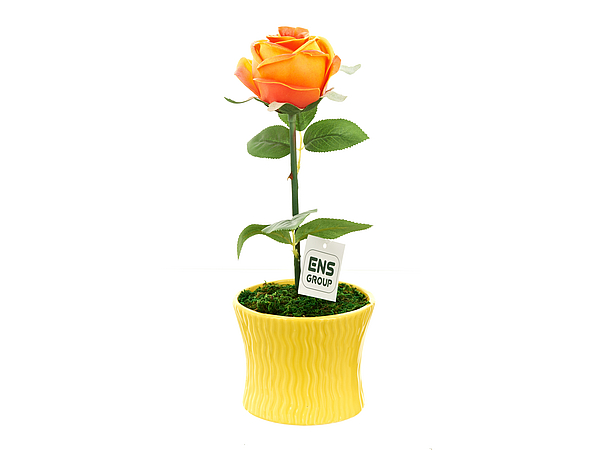 Искусственные растения ENS GROUP Искуственный цветок Чайная Роза (12х33 см) ens group шкатулка чайная роза 10х18х18 см
