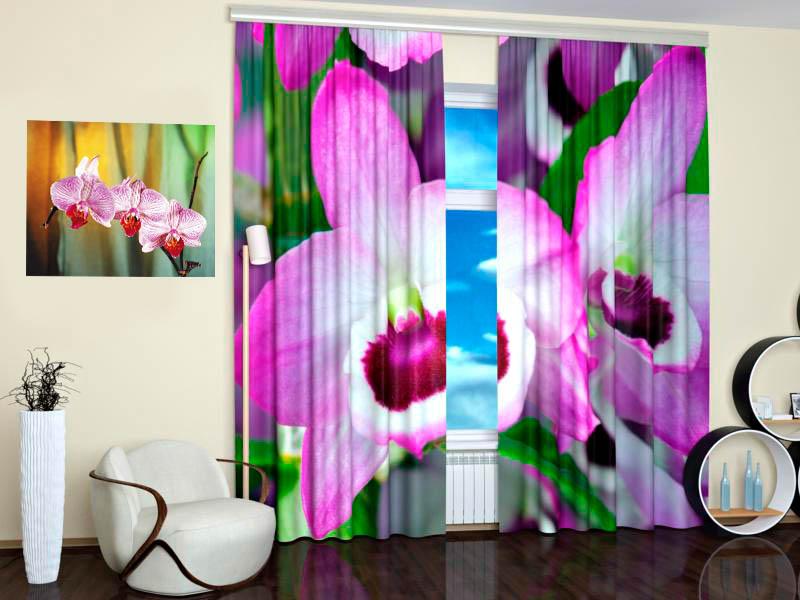 Шторы StickButik Фотошторы Розовая Орхидея