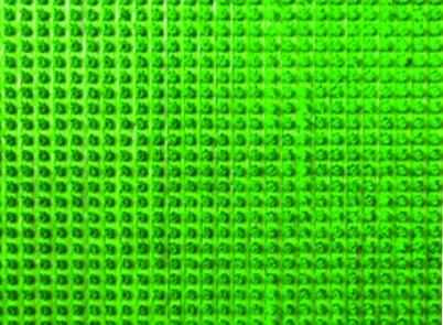 Ковры и ковровые дорожки SunStep Коврик Bremen Цвет: Зеленый (45х60 см) коврик домашний sunstep цвет синий 140 х 200 х 4 см