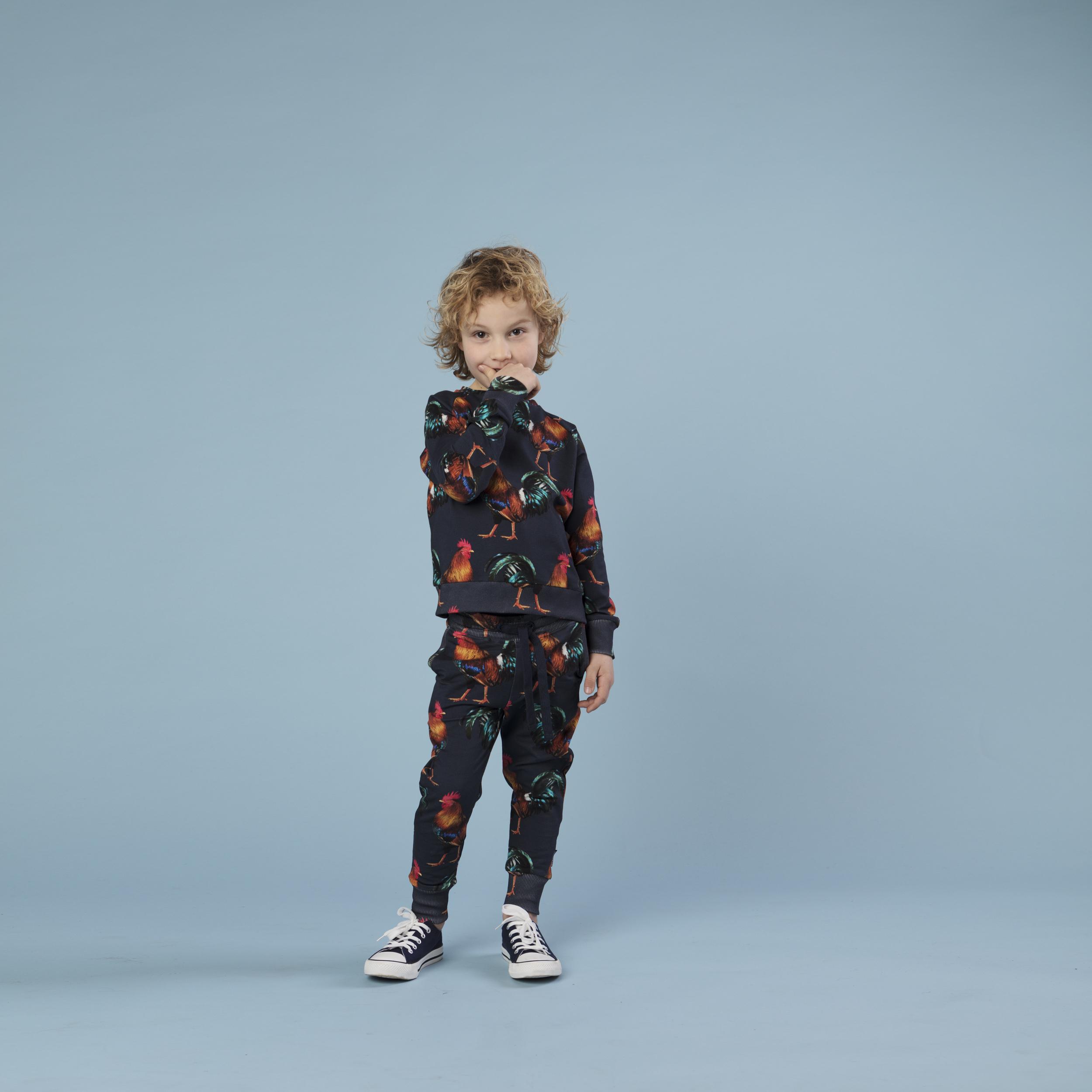Свитер и штаны для мальчиков Забияка (2-3 года) фото