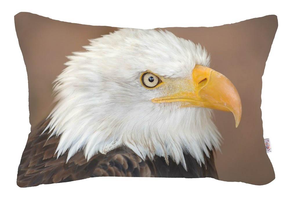 Декоративные подушки Apolena, Декоративная наволочка Eagle (30х50), Россия-Турция, Микрофибра  - Купить