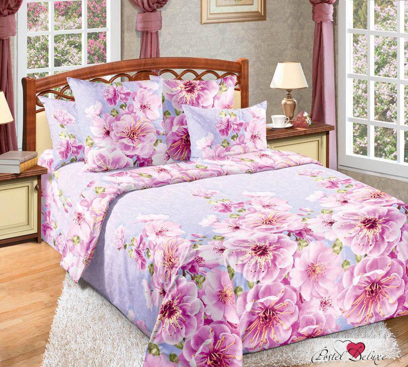 Комплекты постельного белья ТК Хлопковый Рай Постельное белье Миндаль (2 сп. евро)