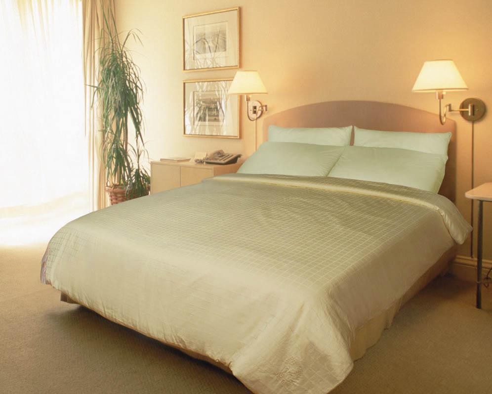 Одеяла KingSilk Одеяло Elisabette Lux Зимнее (140x205 см.)