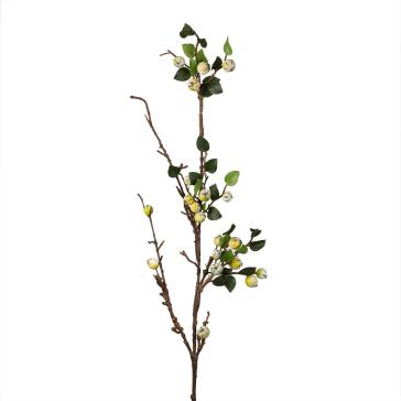 Искусственные растения Home Philosophy Искусственный цветок Ветка С Крупными Ягодами Цвет: Зелёный (100 см) napoleon искусственный цветок lettie 6х8х15 см