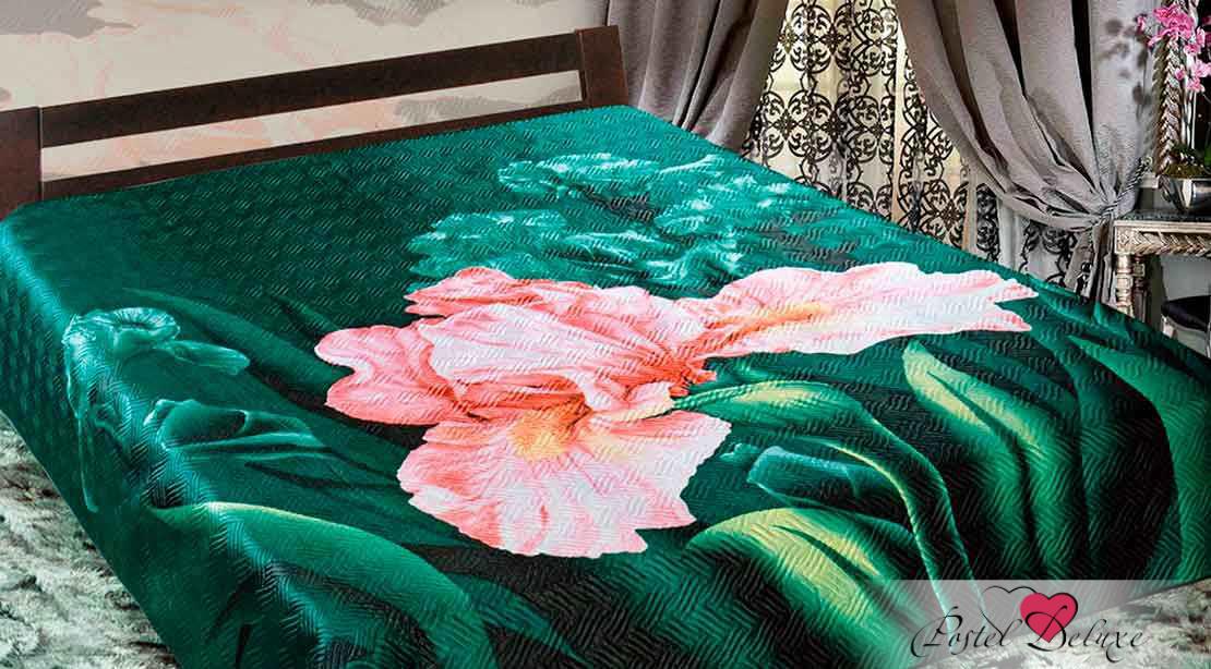 Легкий рисунок тимон и пумба это традиционно