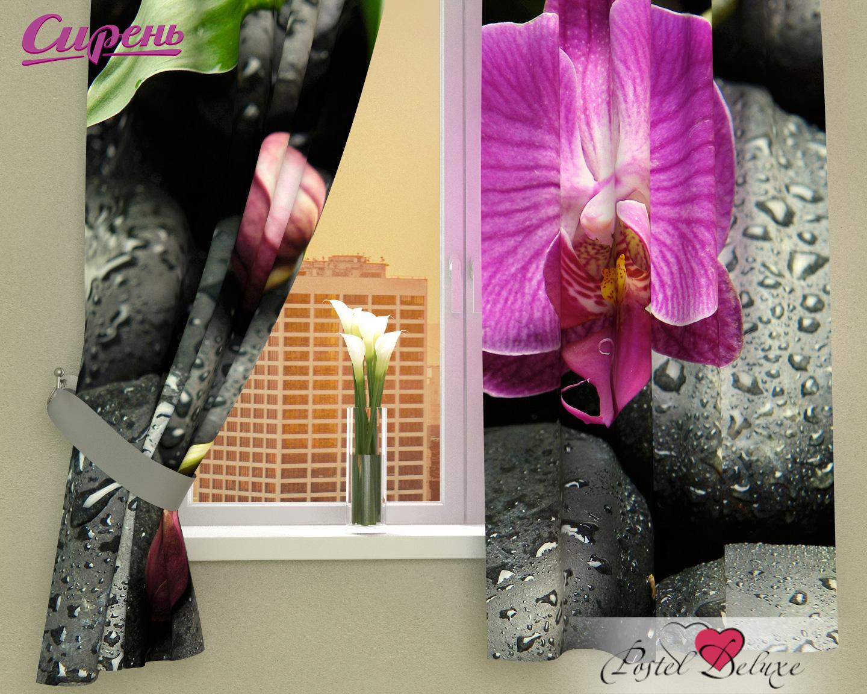 Шторы Сирень Фотошторы Орхидея На Камнях