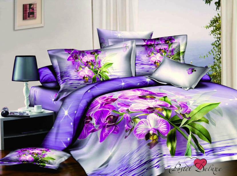 Комплекты постельного белья Tango Постельное белье Deion (2 сп. евро) постельное белье tango постельное белье jacklyn 2 сп евро