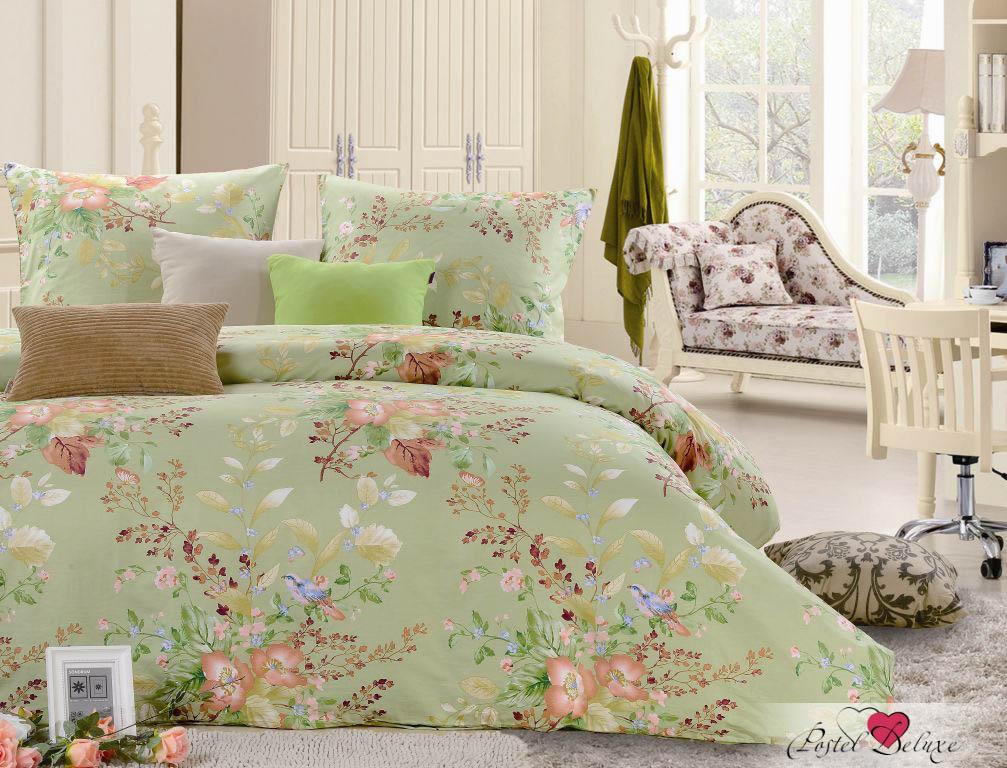 Купить Комплекты постельного белья Valtery, Постельное белье Lashonda (семейное), Китай, Зеленый, Хлопковый сатин